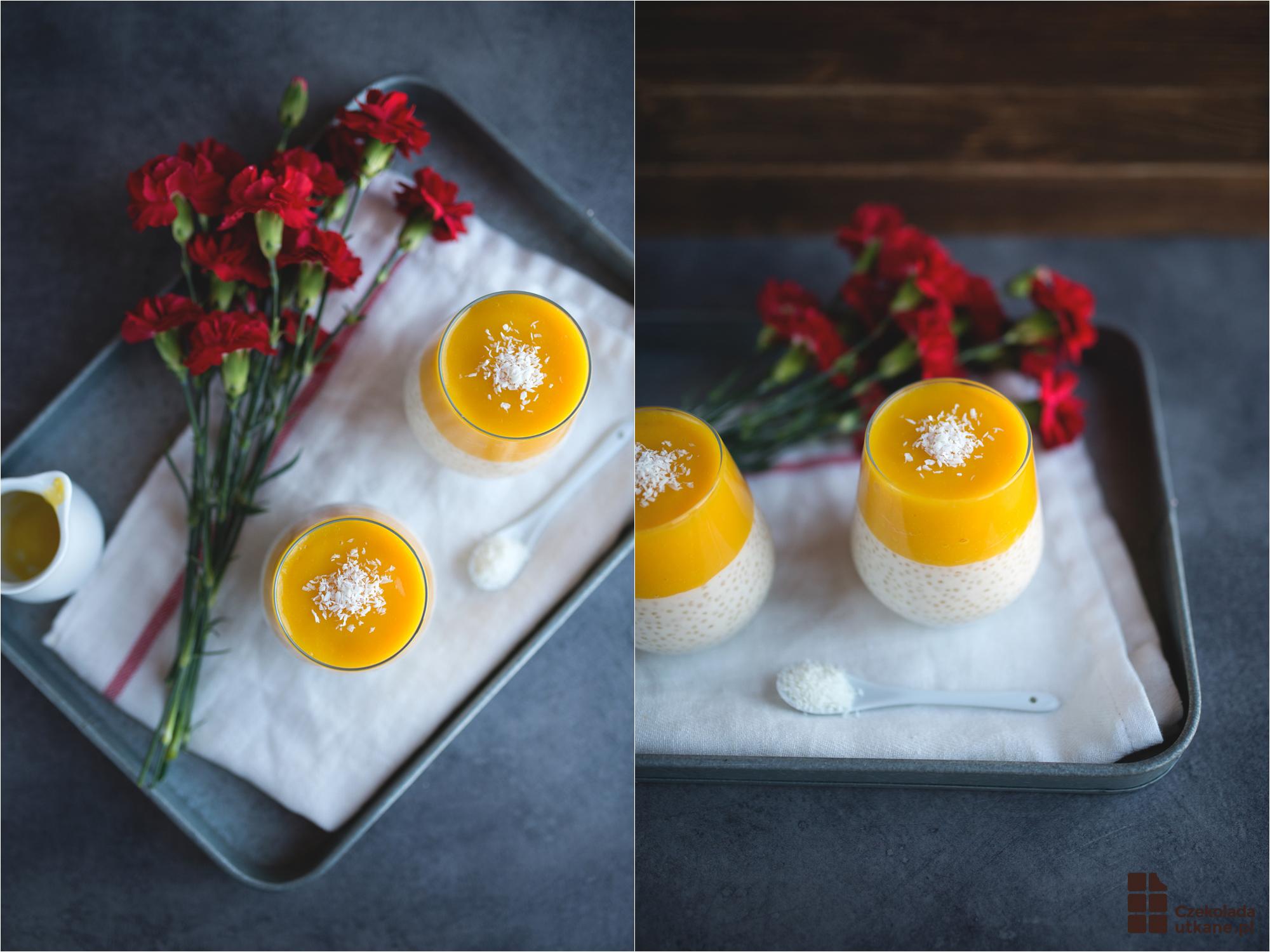 pudding-z-tapioki-2